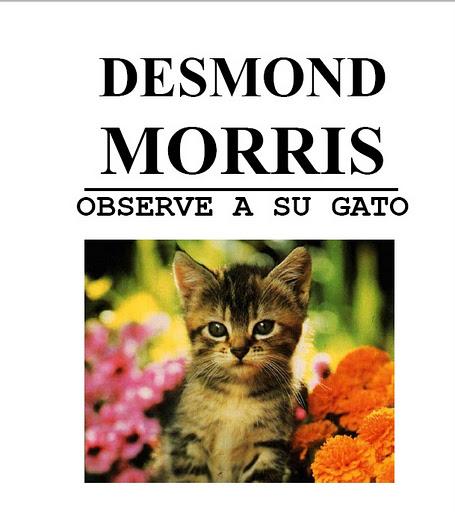 Libros de gatos el cuidado de tu gato - Cuidados gato 1 mes ...